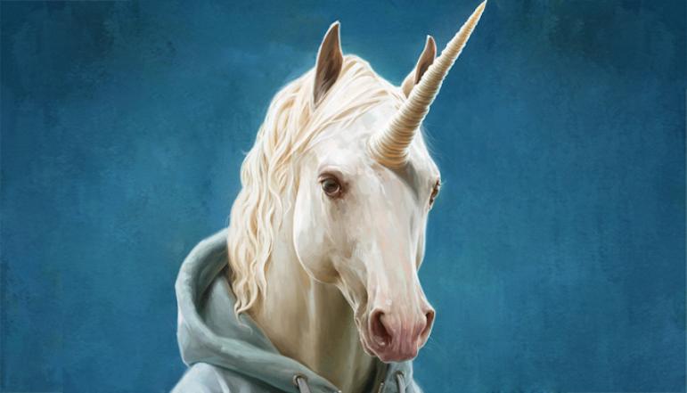 Unicorn Company